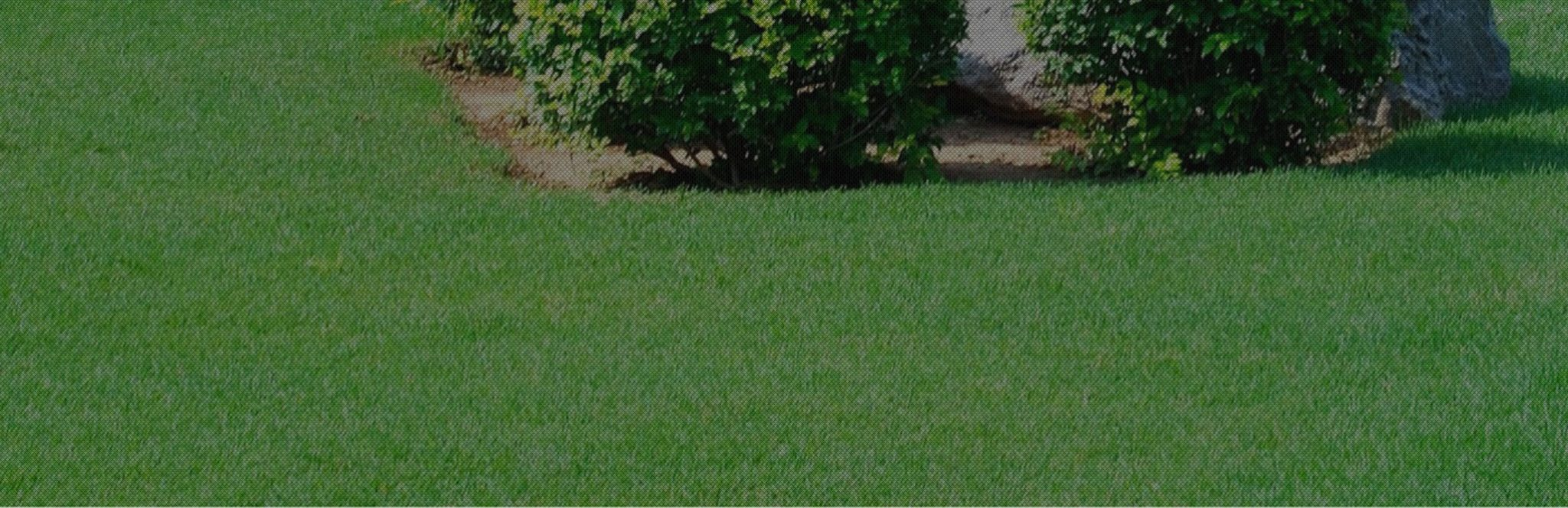 Landscaping Waco Tx Lawn Care And Sprinkler Services